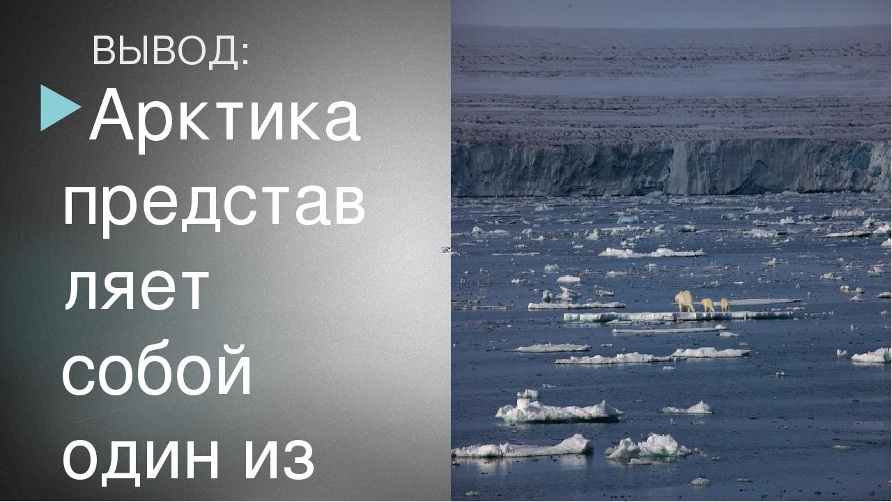 ВЫВОД: Арктика представляет собой один из последних просторов дикой природы н...