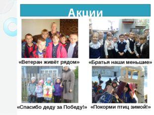 Акции «Ветеран живёт рядом» «Спасибо деду за Победу!» «Братья наши меньшие» «