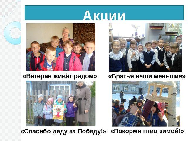 Акции «Ветеран живёт рядом» «Спасибо деду за Победу!» «Братья наши меньшие» «...