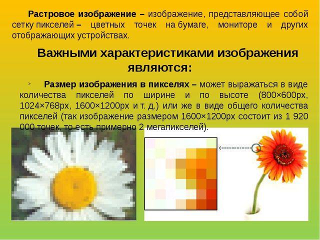 Растровое изображение – изображение, представляющее собой сеткупикселей– цв...