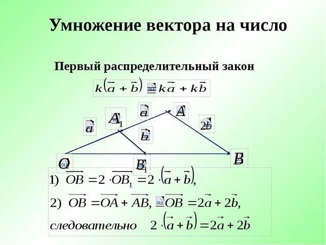 Умножение вектора на число Первый распределительный закон