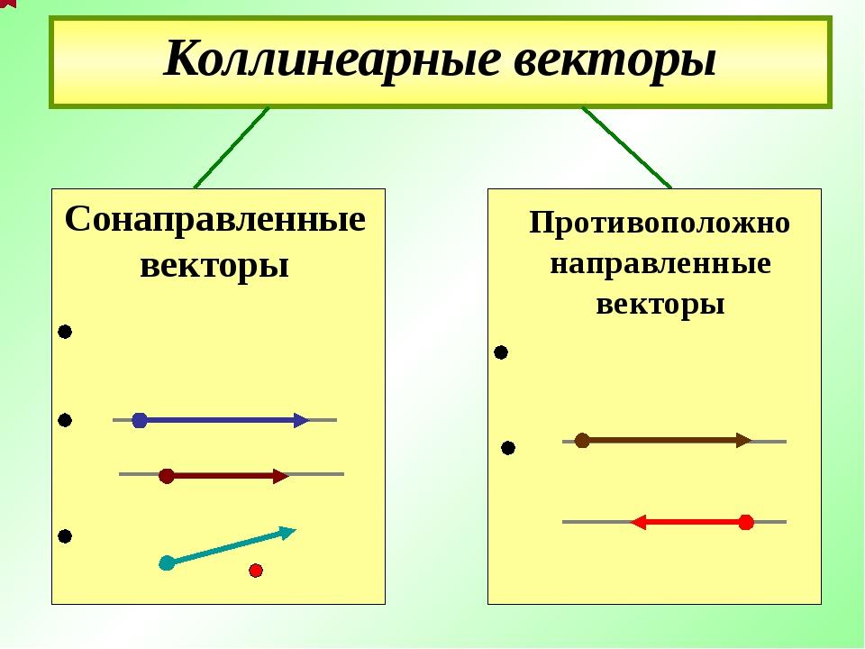 Коллинеарные векторы Противоположно направленные векторы Сонаправленные вект...