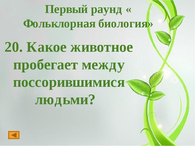 ВТОРОЙ РАУНД «Минутка»