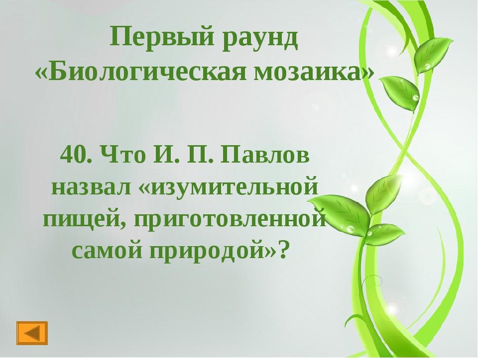 Первый раунд « Фольклорная биология» 30.Англичане говорят: «Всякий считает св...