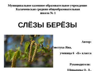Муниципальное казенное образовательное учреждение Калачеевская средняя общеоб