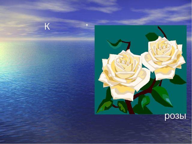 К , розы