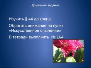 Домашнее задание Изучить § 44 до конца. Обратить внимание на пункт «Искусстве