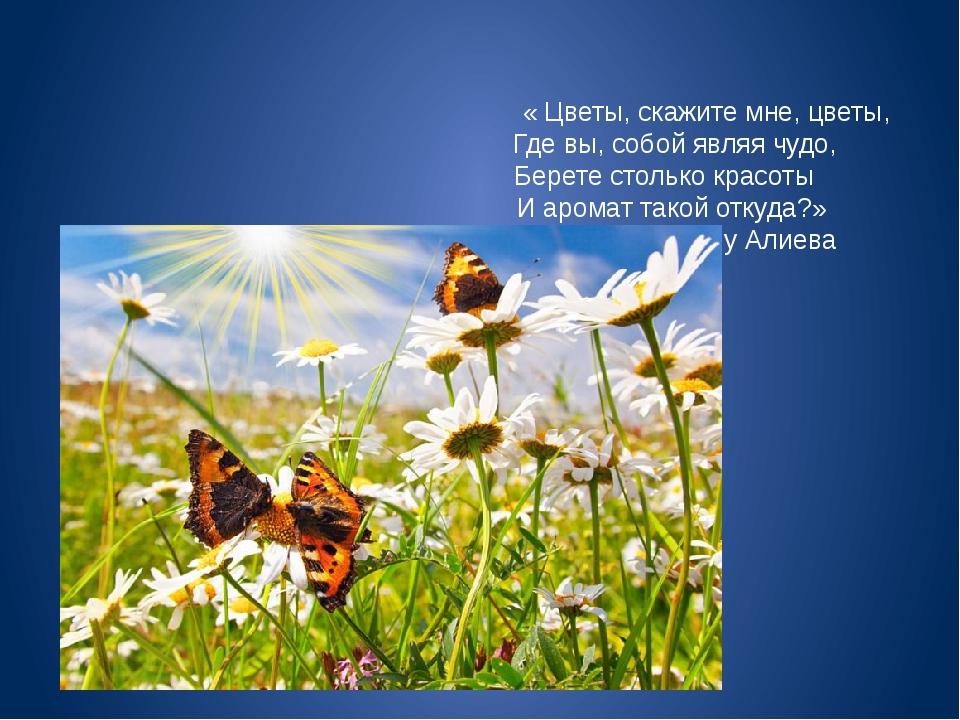 « Цветы, скажите мне, цветы, Где вы, собой являя чудо, Берете столько красот...