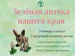 Ученицы 4 класса Городецкой основной школы Руководитель проекта: учитель нача