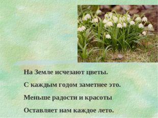 На Земле исчезают цветы. С каждым годом заметнее это. Меньше радости и красот