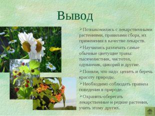Вывод Познакомились с лекарственными растениями, правилами сбора, их применен