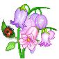 hello_html_m44e7f2cd.png
