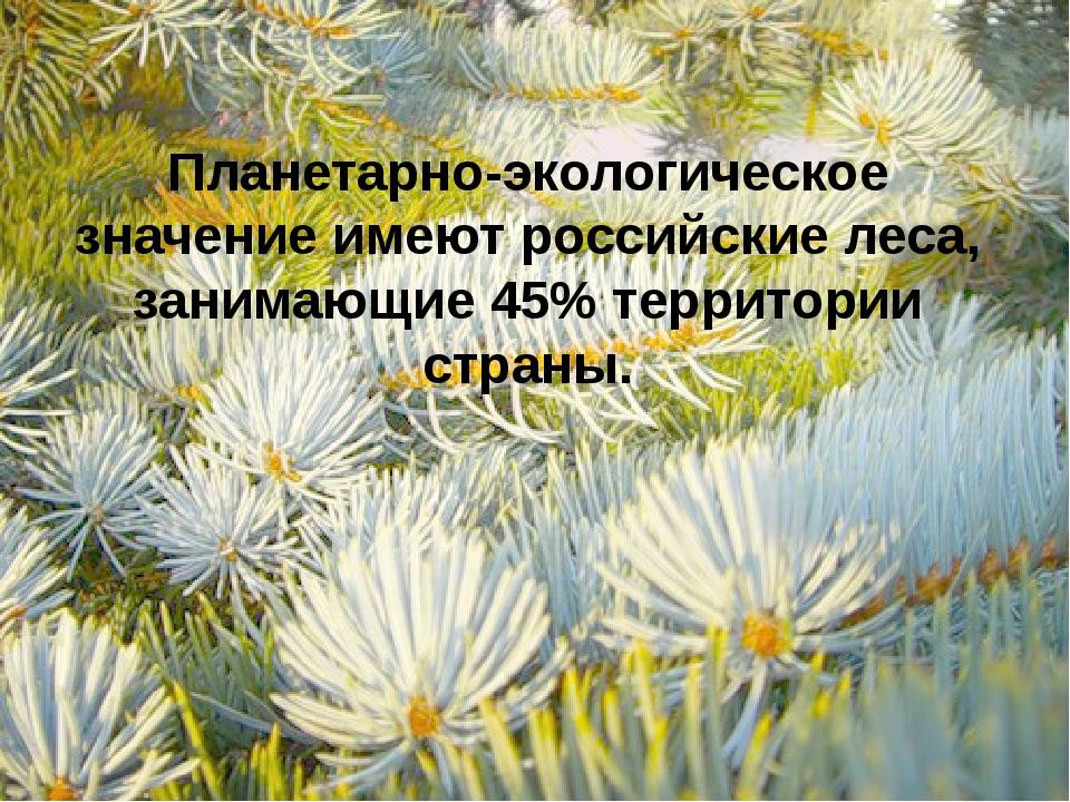 Планетарно-экологическое значение имеют российские леса, занимающие 45% терри...