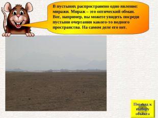 В пустынях распространено одно явление: миражи. Мираж – это оптический обман.