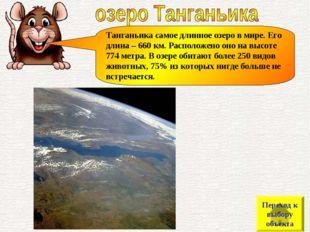 Танганьика самое длинное озеро в мире. Его длина – 660 км. Расположено оно на