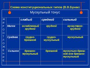 Схема конституциональных типов (В.В.Бунак) Мускульный тонус Ж И Р О О Т Л О