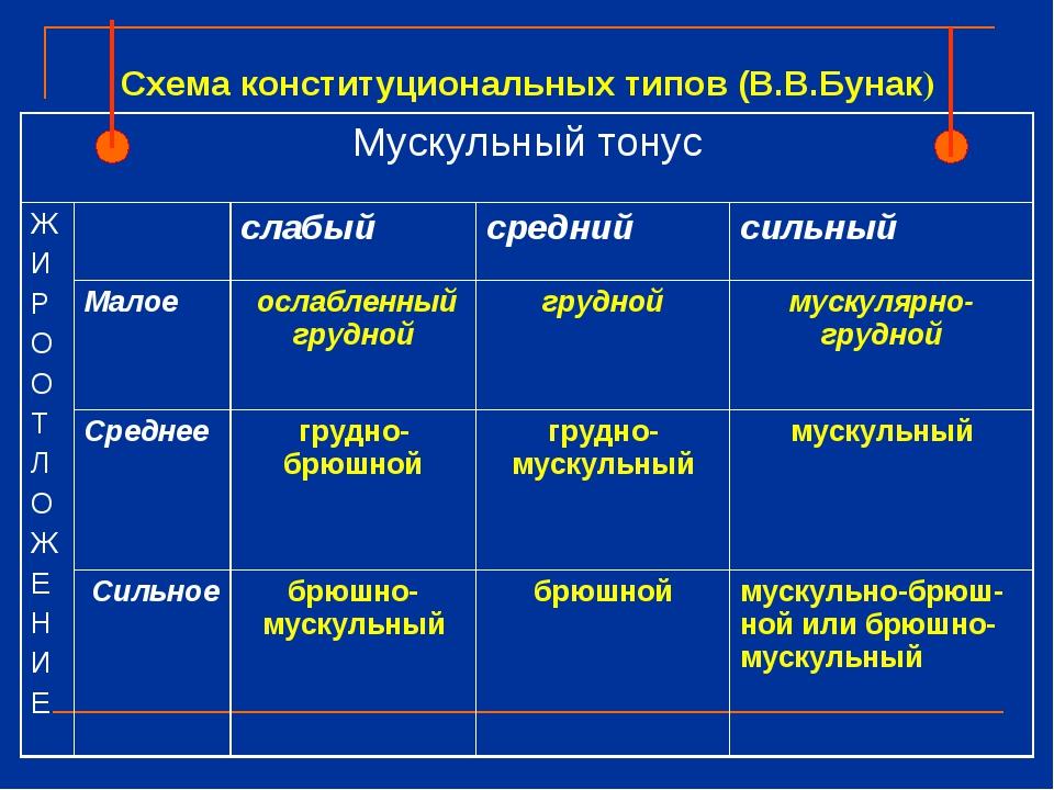 Схема конституциональных типов (В.В.Бунак) Мускульный тонус Ж И Р О О Т Л О...