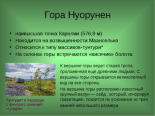 Гора Нуорунен наивысшая точка Карелии (576,9 м) Находится на возвышенности Ма