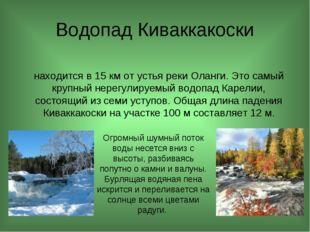 Водопад Киваккакоски находится в 15 км от устья реки Оланги. Это самый крупн