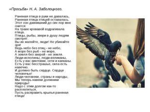 «Просьба» Н. А. Заболоцкого. Раненая птица в руки не давалась, Раненая птица