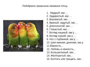 Подобрать правильно названия птиц. Мудрый, как … 2. Задиристый, как … 3. Воро