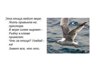 Эта птица любит море. Жить привыкла на просторе. В море синее нырнет - Рыбку