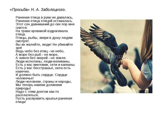 «Просьба» Н. А. Заболоцкого. Раненая птица в руки не давалась, Раненая птица...