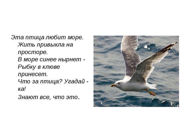 Эта птица любит море. Жить привыкла на просторе. В море синее нырнет - Рыбку...