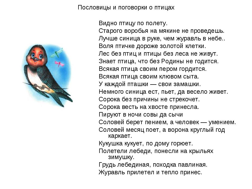 Пословицы и поговорки о птицах Видно птицу по полету. Старого воробья на мяки...