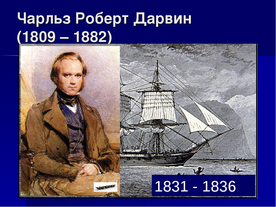 Чарльз Роберт Дарвин (1809 – 1882) 1831 - 1836