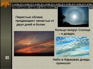 Небо в барашках дождь приносит Кольцо вокруг Солнца – к дождю. Багровые зори