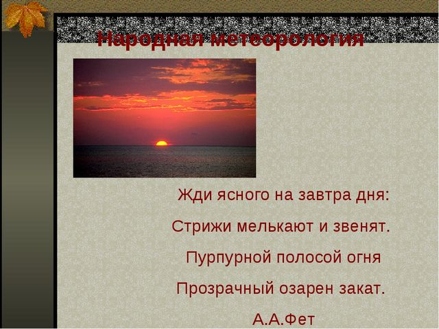 Народная метеорология Жди ясного на завтра дня: Стрижи мелькают и звенят. Пур...