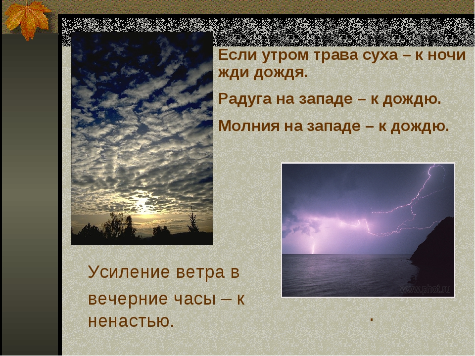 Если утром трава суха – к ночи жди дождя. Радуга на западе – к дождю. Молния...