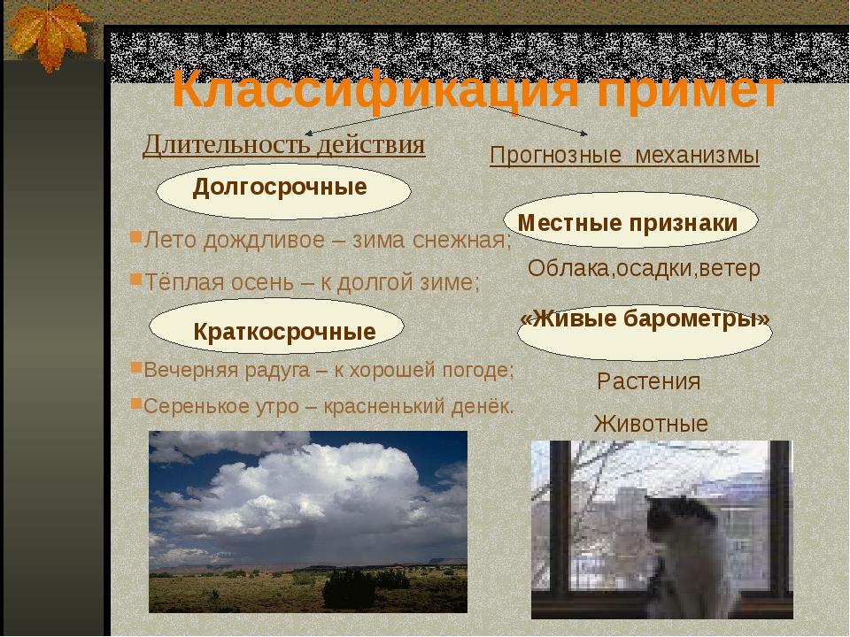 Классификация примет Длительность действия Прогнозные механизмы Лето дождливо...