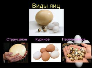 Виды яиц Страусиное Куриное Перепелиное