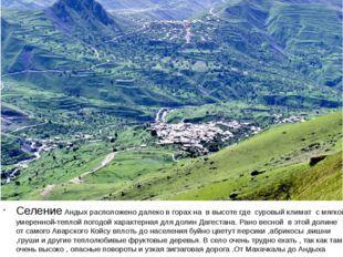 Селение Андых расположено далеко в горах на в высоте где суровый климат с мя