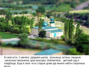 В селе есть 2 мечети ,средняя школа , больница ,аптека ,пекарня ,несколько м