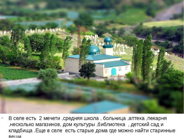 В селе есть 2 мечети ,средняя школа , больница ,аптека ,пекарня ,несколько м...