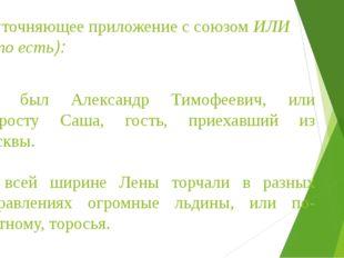 Д) уточняющее приложение с союзом ИЛИ (= то есть): Это был Александр Тимофеев