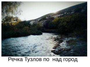 Речка Тузлов по над город