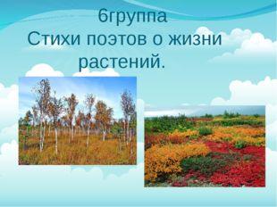 6группа Стихи поэтов о жизни растений.