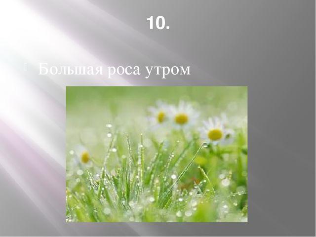 10. Большая роса утром