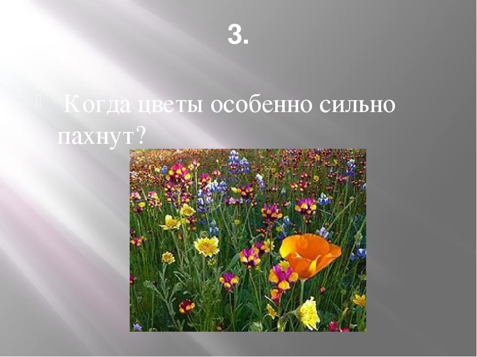 3. Когда цветы особенно сильно пахнут?