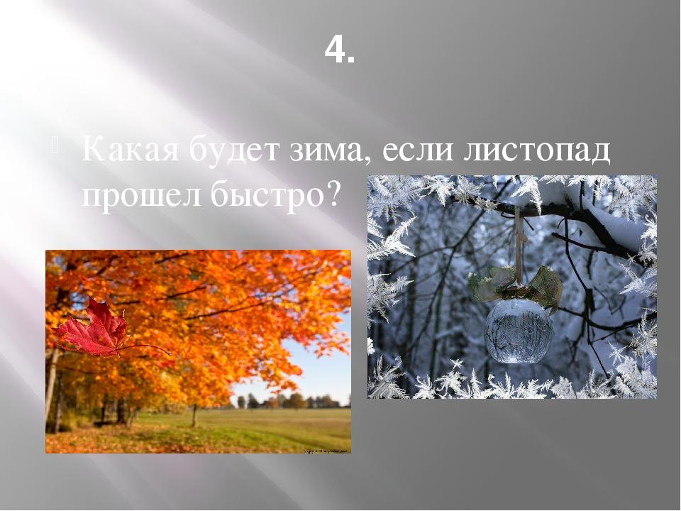 4. Какая будет зима, если листопад прошел быстро?