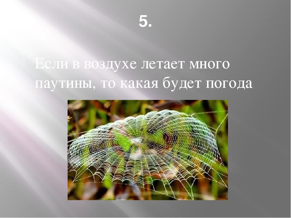 5. Если в воздухе летает много паутины, то какая будет погода