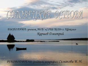 ВЫПОЛНИЛ: ученик МОУ «СОШ № 20» г. Щекино Куршев Дмитрий РУКОВОДИТЕЛЬ: учител