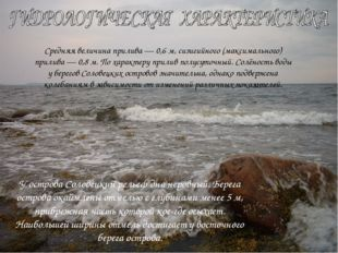 У острова Соловецкий рельеф дна неровный. Берега острова окаймлены отмелью с