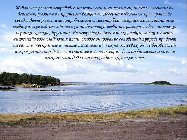 Живописен рельеф островов, с многочисленными холмами, низкими песчаными берег...