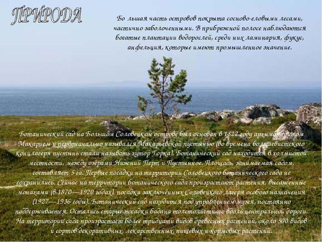 Бо́льшая часть островов покрыта сосново-еловыми лесами, частично заболоченным...