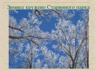 Зимнее кружево Старинного парка